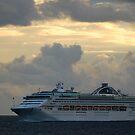 Sun Princess at Sea by Bev Woodman