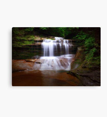 Ithaca's Buttermilk falls XI Canvas Print