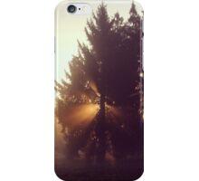 Herbstlicht iPhone Case/Skin