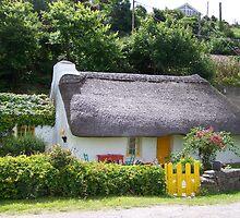 Cottage by Dorota Rosinska