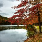 My Favorite Time Of Year by mhuaylla