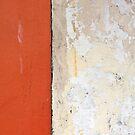 Orange by Lance Shepherd