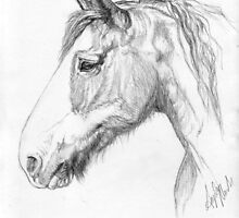 Dozer - Portrait of a Clydesdale by Angela  Marks