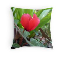 purple cyclamen Throw Pillow