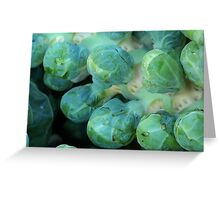 Fresh Brussels Sprouts Greeting Card