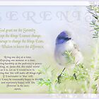 Serenity Prayer by Holly Kempe