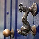 Fish door knocker - La Laguna Tenerife by evilcat