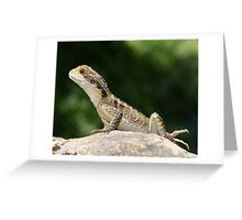 Reptiles are cute Greeting Card