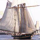 Battleship by Scott Curti