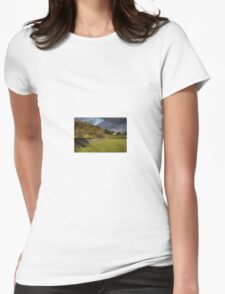 Dry Stone Wall and Barn Landscape Womens Fitted T-Shirt