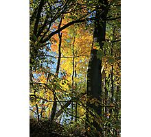 Michigan Colors Photographic Print