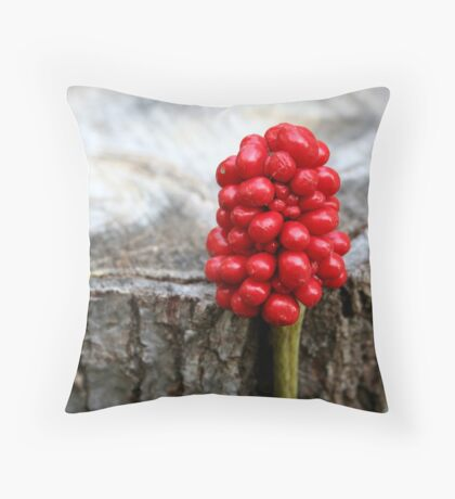 Red and grey Throw Pillow