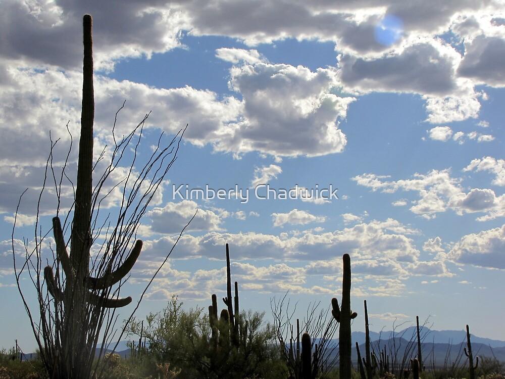 Desert Skies by Kimberly Chadwick