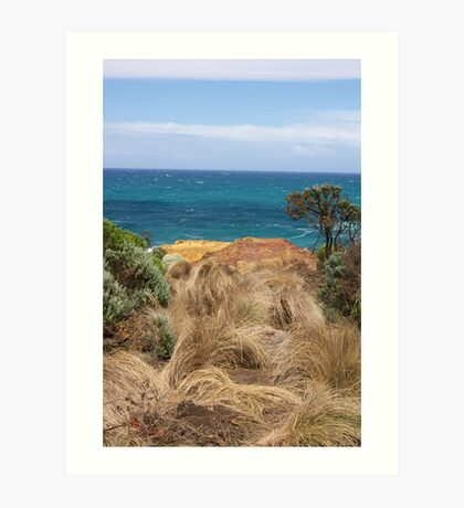 Grass in the wind Art Print