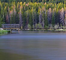 Sprage Lake at dawn by ericasmithphoto