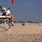 California Lifeguard Stand by Jay Gross