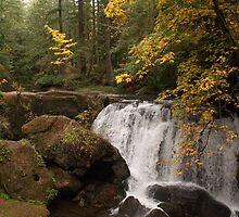 Whatcom Creek Falls by Appel