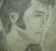 Elvis, the King of Rock n Roll by jentson