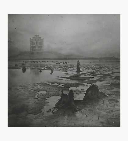 Countess of Wetlands Photographic Print