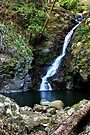 Bahnamboola Falls by Jason Asher
