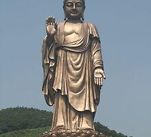 Lingshan Buddha, China by elphonline