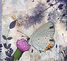 Lavender Wings by Lesley Smitheringale