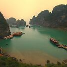 Halong Bay by Michael Garbutt