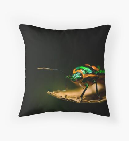 ...they went that-a-way... Throw Pillow