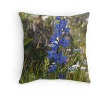 Spotted Sun-orchid (Thelymitra ixioides) Throw Pillow