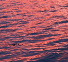 The Night The Sea Turned Pink - Ireland #nofilter Sticker