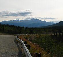 Mountain Way by Stephen Ryan