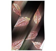 Autumn Leaves - Lochwinnoch Scotland Poster