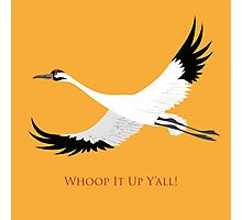 Whooping Crane - Whoop It Up Y'All Photographic Print