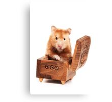 Hamster in a red box Canvas Print