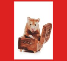 Hamster in a red box Kids Clothes