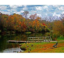 Gorgeous Autumn Photographic Print