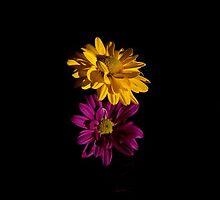 Flowers - Tryptic by Gabriel Skoropada