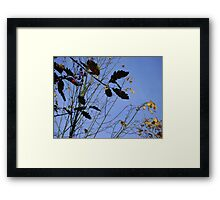 Flying South - autumn leaves, Burntisland Framed Print