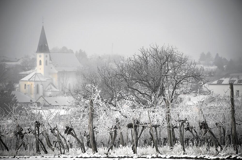 Austrian village in winter by Dan Shalloe