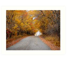Autumn Passage Art Print