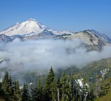 Mt. Baker, North Cascades National Park by Barb White