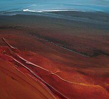Redhill Field by Alison Malcolm Flower