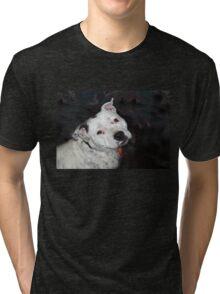 Chelsea  Tri-blend T-Shirt