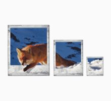 fox polaroids shirt T-Shirt