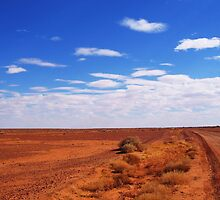 The Outback by STEPHANIE STENGEL | STELONATURE PHOTOGRAHY