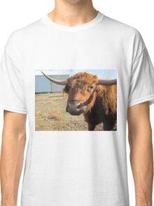 Brownie  02 November 2014 Classic T-Shirt