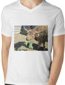 Nimbus  03 October 2014 Mens V-Neck T-Shirt