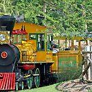 Busch Gardens Fun Train by longaray2
