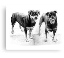 Sasha and Holly Canvas Print