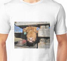 Anthony  29 March 2015 Unisex T-Shirt